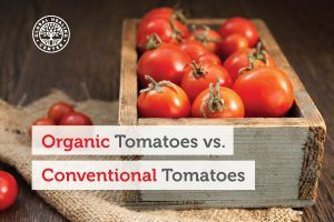 organic-tomatoes-blog-300x200