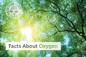 oxygen-facts-300x200