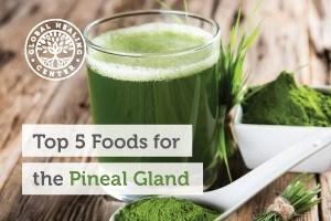 pineal-gland-blog-300x200