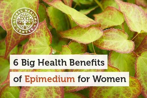 epimedium
