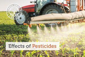 pesticides-blog-300x200