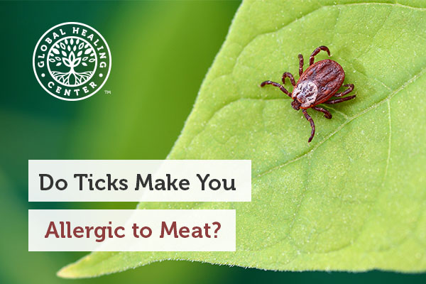 tick-allergy-to-meat