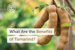 benefits-of-tamarind-300x200