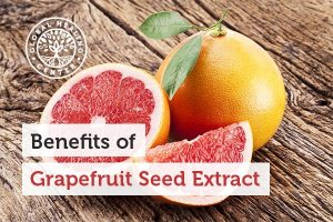 grapefruit-seed-extract-300x200