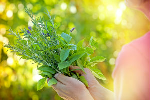 herbs-woman (1)