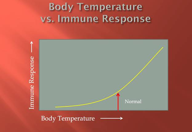 body temperature-vs-immune-response