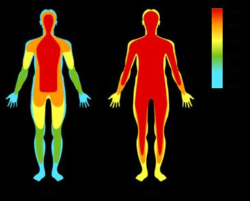 low-body-temperature-cold-vs-warm
