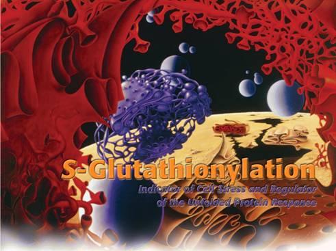 S-Glutathionylation