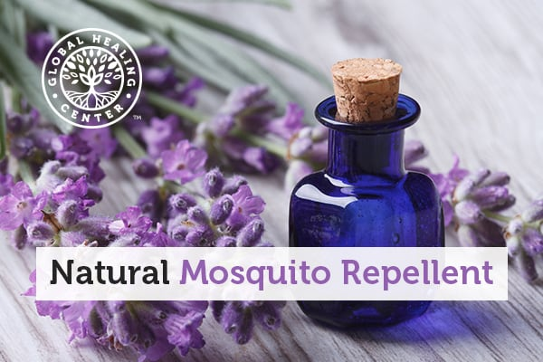 natural-mosquito-repellent