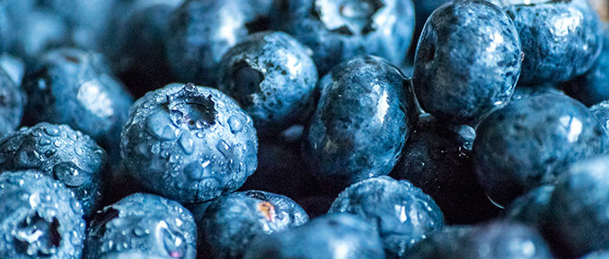 blueberries-epigenetics-health-678x289