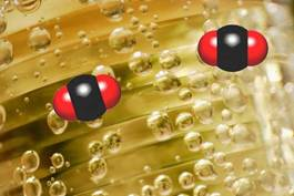 carbon-dioxide-for body-metabolism