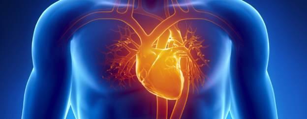 understanding-heart-disease