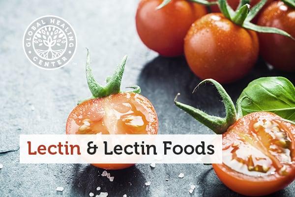 lectin
