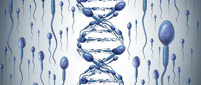 sperm-DNA-678x289
