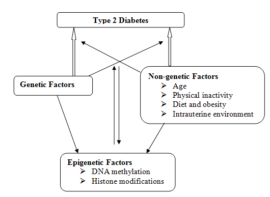 diabetes-type2-epigenetic-fig2