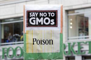 GMOs-sign