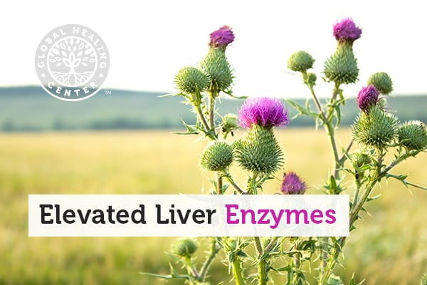 elevated-liver-enzymes