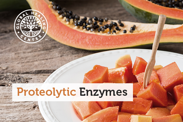 proteolytic-enzymes