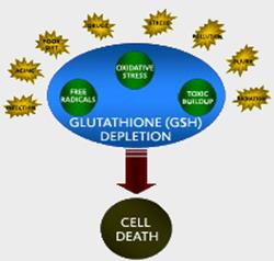 glutathione-gsh-depletion