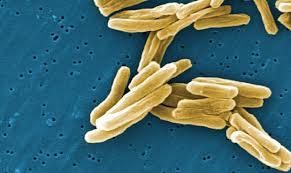 antibiotic-resistance-3
