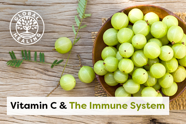 vitamin-c-the-immune-system