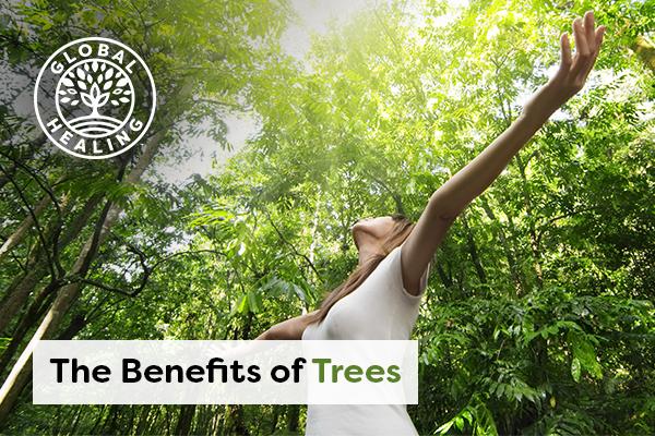 benefits-of-trees