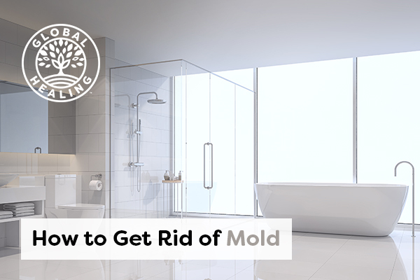 how-to-get-rid-of-mold