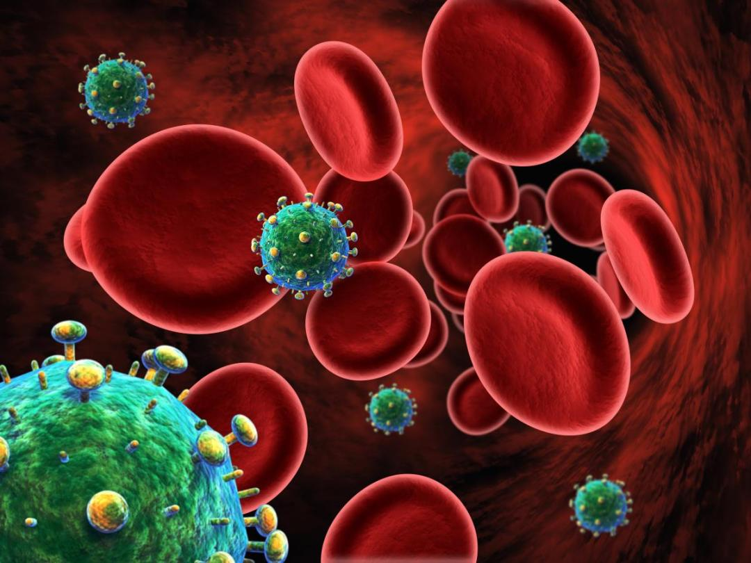Hiv-Blood-Cells-Aids
