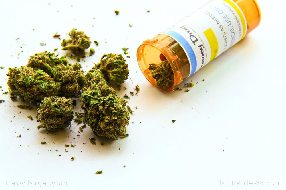 Marijuana-Medical-Marihuana-Cannabis-Prescription-Medicinal-Bottle
