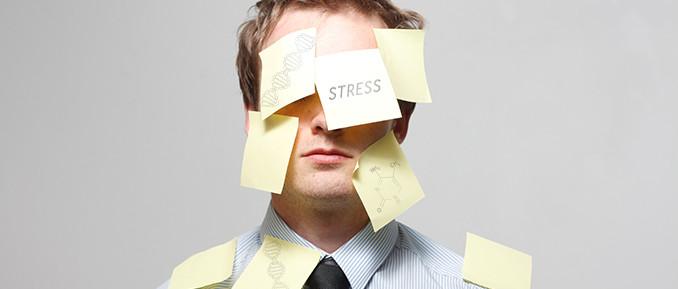 stress-epigenetics1-678x289