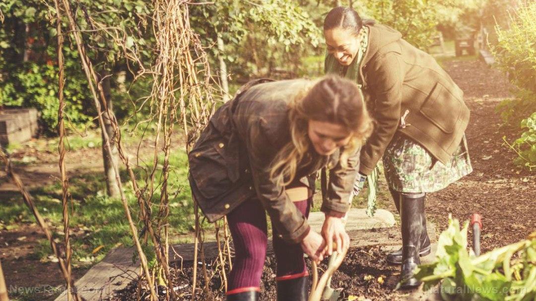 Women-Friends-Gardening-Soil-Happy