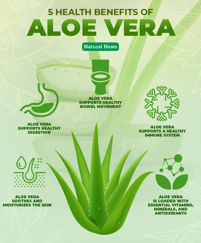 5-Health-Benefits-of-Aloe-Vera