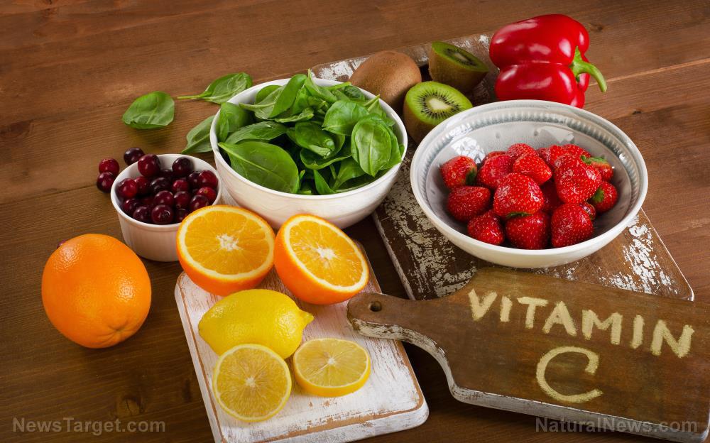 C-Vitamin-Food-Bowl-Cartoon-Cranberry-Diet