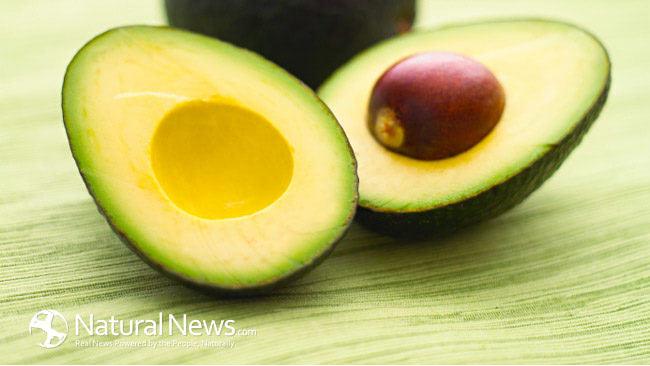 Avocado-Halves-Brain-Food-650X433