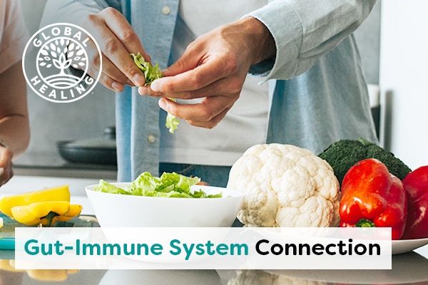 gut-immune-system-connection