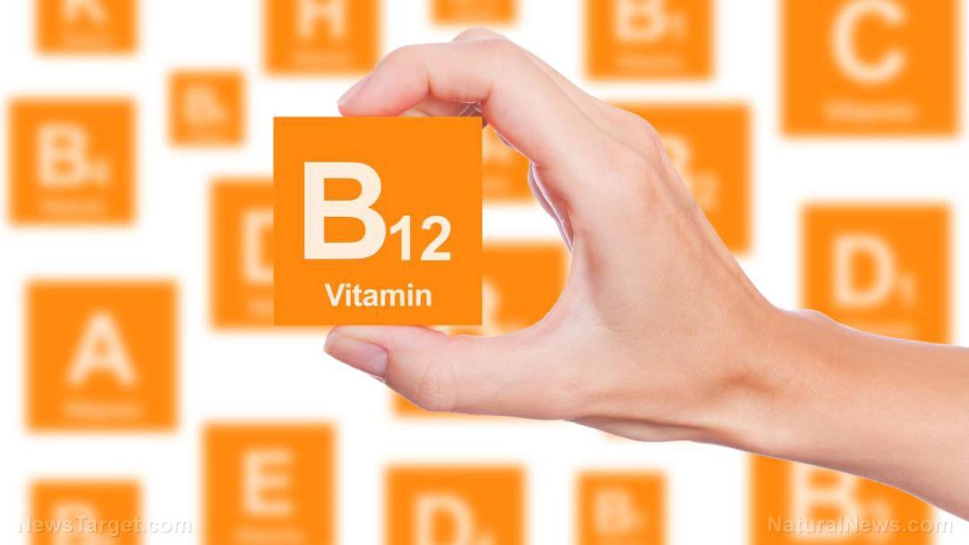 Hand-Holds-Box-Vitamin-B12