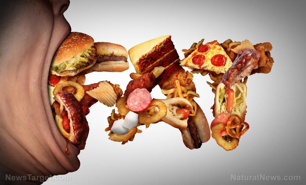 Obese-Craving-Nutrition-Calorie-Fat-Unhealthy-Munching