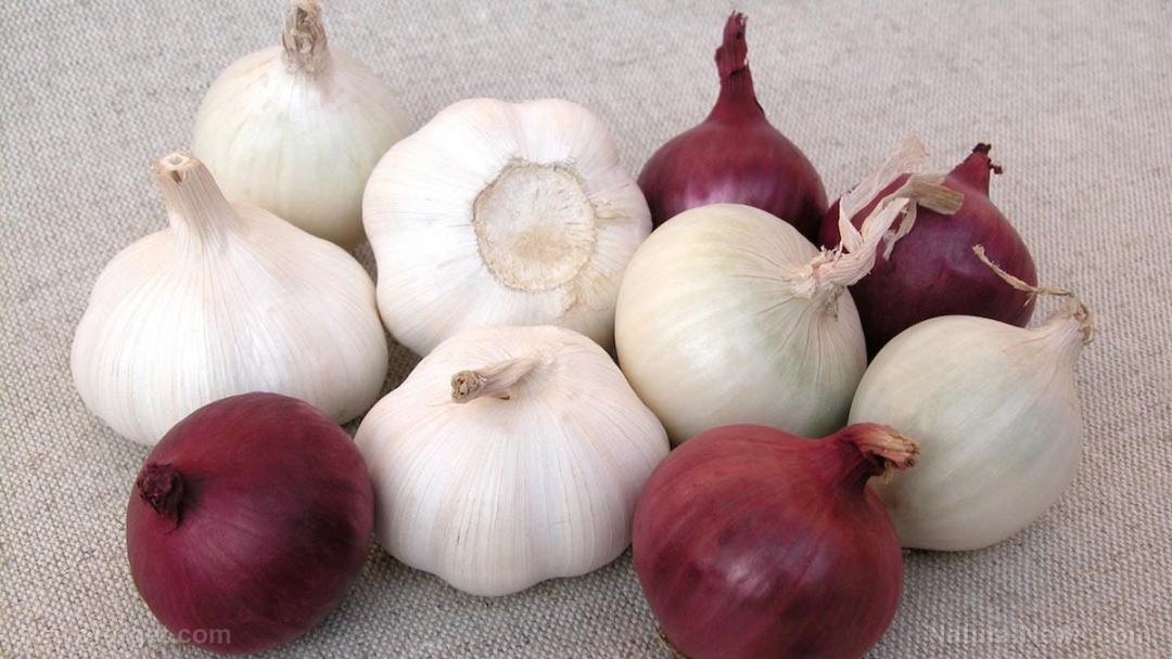 Onions-Garlic-Vegetables
