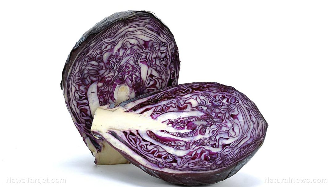 Red-Cabbage-Vegetable-Food