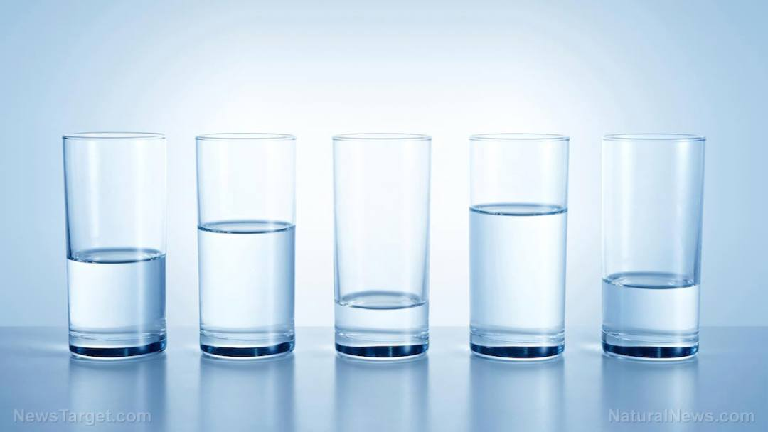 5-Water-Glasses-Filter