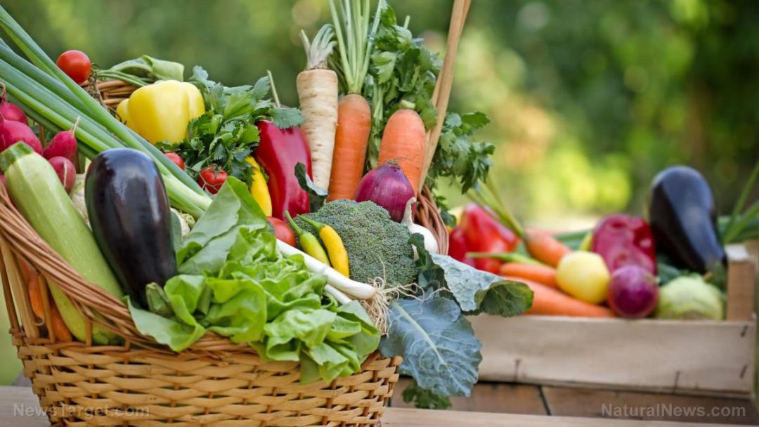 Agricultural-Agriculture-Bell-Pepper-Broccoli-Carrots-Cauliflower-Cherry-Tomatoes
