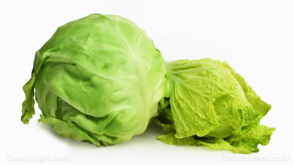 Cabbage-Agriculture-Background-Chinese-Cook-Diet-Farming
