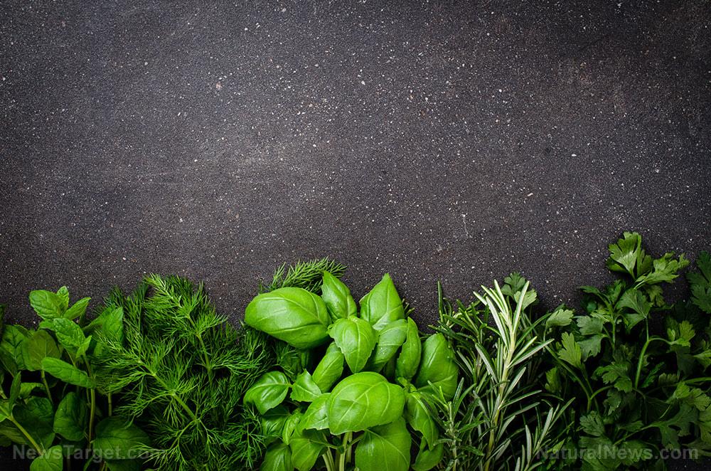 Fresh-Herbs-On-Dark-Background