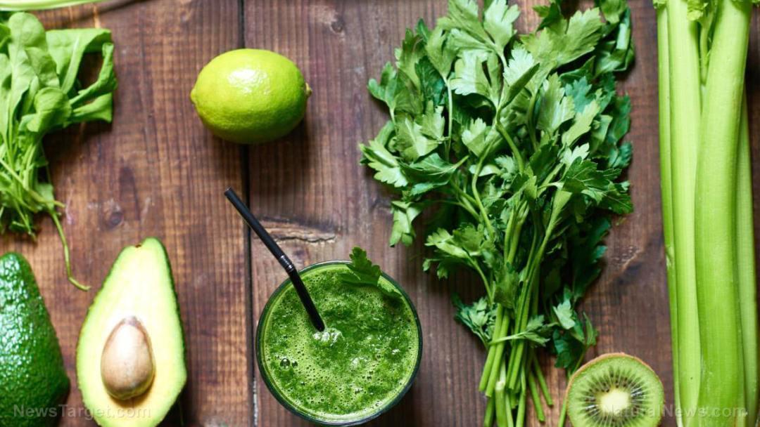 Green-Drink-Smoothie-Avocado-Celery-Kiwi-Cilantro