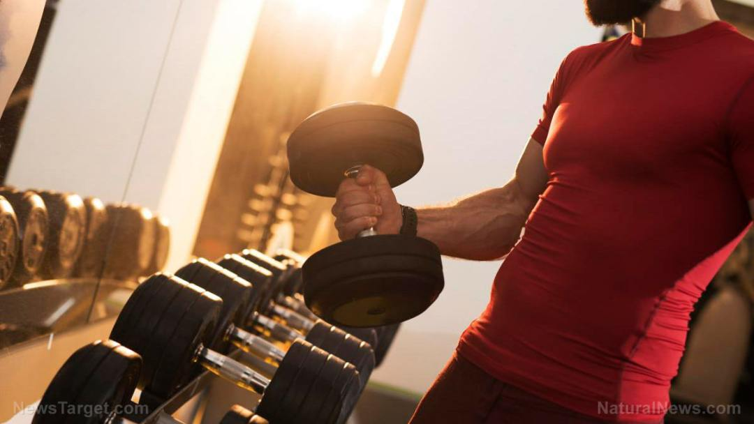 Man-Lift-Weight-Dumbbell-Curl-Muscle