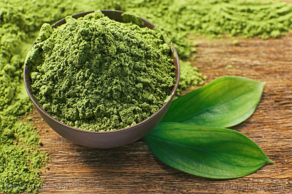 Matcha-Tea-Powder-Green-Chlorella-Wooden-Drink