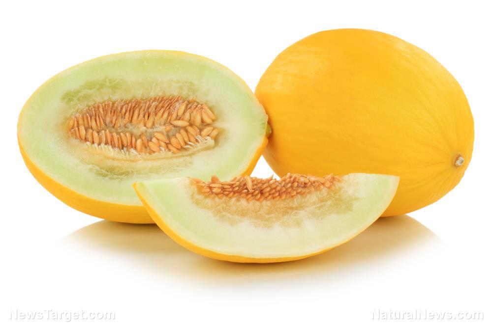 Melon-Eat-Food-Fruit-Healthy-Honey-Honeydew