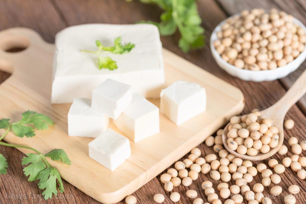 Tofu-Soft-Soy-Soybean-Bean-Board-Cheese