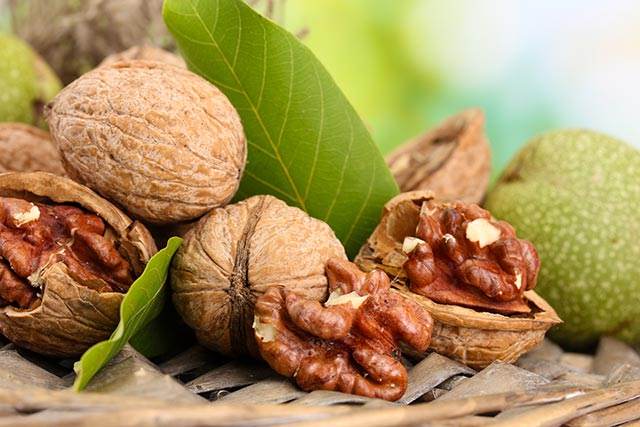walnut-leaf-natural-medicine-remedy-leaves-1