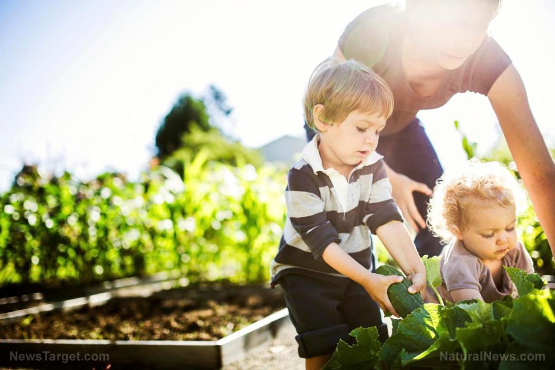 Woman-Mother-Children-Gardening-Plants